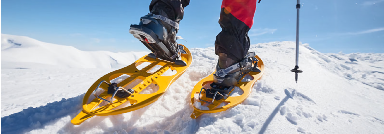 Noleggio sci